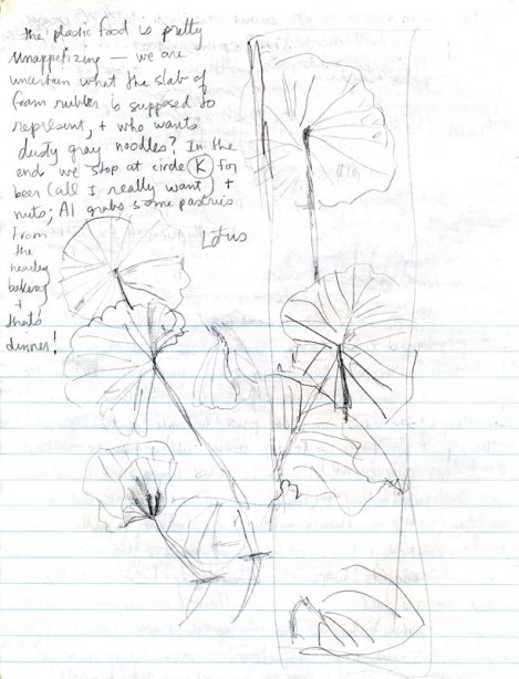 Journal from Japan showing my sketch of the lotus pond